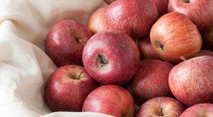 リンゴ記念日